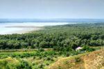 Slobozia Mare - jezero s mangrovovými porosty