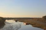 Pohraniční řeka Prut - přírodní rezervace